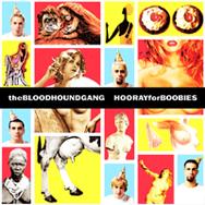 bloodhound-boobies